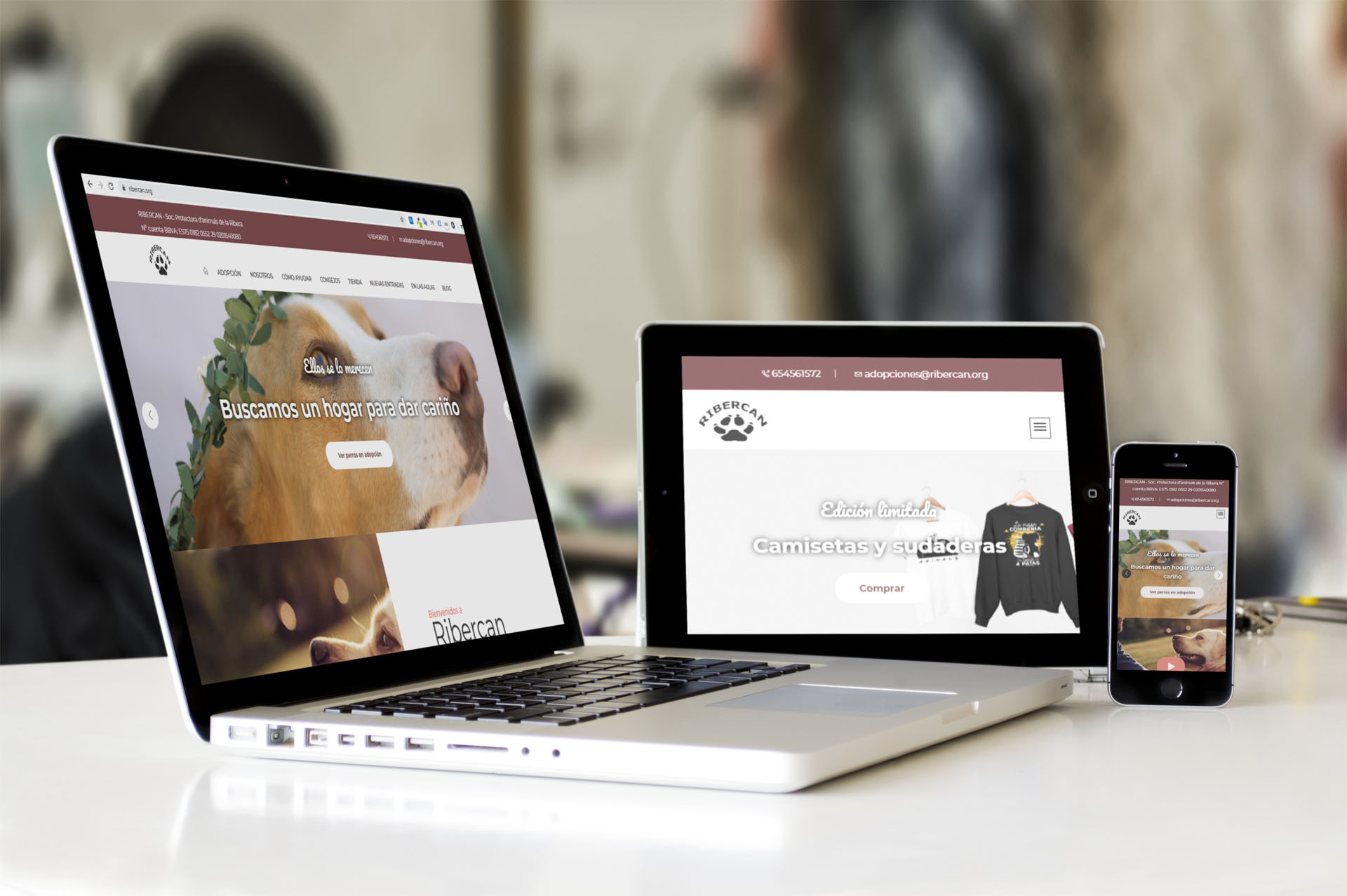 empresa programacion web